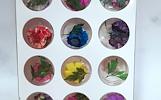 Džiovintų gėlyčių rinkinys nagams