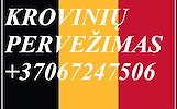 Eksponatų ir parodų įrangos pervežimas Lietuva – Belgija – Lietuva !