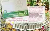 Glucosamine Forte GP 60 kaps SANARIMS – maisto papildas Santegra JAV – PIGIAU