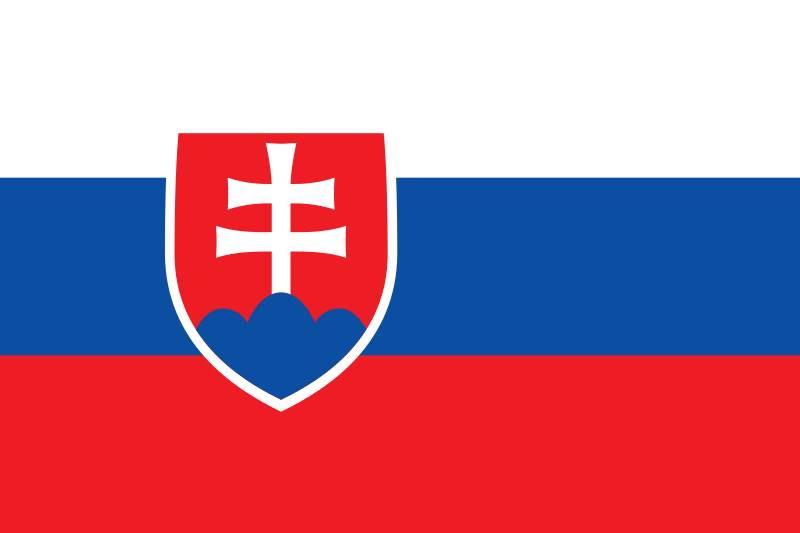 KROVINIŲ GABENIMAS : į Slovakiją, iš Slovakijos ·        Pilnų / Dalinių krovinių pervežimas  į / iš Slovakijos.  ( Negabaritinių krovinių pervežimas