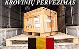 Krovinių Pervežimas tentiniu mikroautobusiuku Lietuva – BELGIJA – Lietuva - BELGIJA