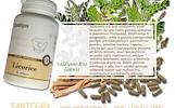 Licorice 100 kaps, saldymedžio šaknis – maisto papildas Santegra JAV – AKCIJA