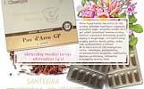 Pau d'Arco GP 30 kaps, skruzdžių medžio žievė – maisto papildas Santegra JAV – PIGIAU