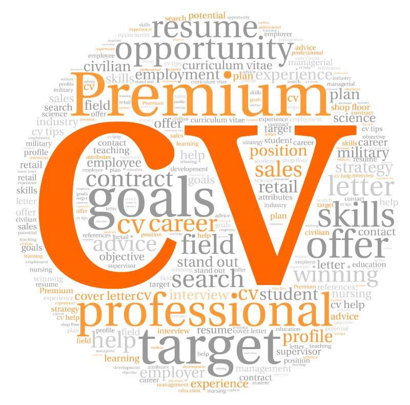 Profesionaliai ir greitai rašome CV