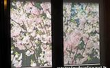 Roletai.fotoroletai.žaliuzės,langai,markizės,tinkleliai
