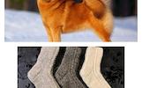 Šuns vilnos kojinės, pirštinės, riešinės, ankeliai