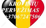 Tarptautiniai perkraustymai Lietuva-BELGIJA-Lietuva