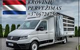 Transporto paslaugas Lietuva - Olandija - Lietuva.